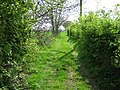 Bridleway to Park Farm - geograph.org.uk - 1269113.jpg