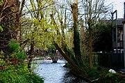 Bruges2014-137.jpg