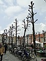 Brugge - panoramio (114).jpg