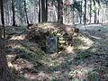 Brunnen Unitaetswald 1.JPG