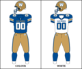 CFL WPG Jersey 2016.png