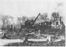 Black and white image of a steam locomotive pulling a crane and several cars of logs. In the foreground are large tree stumps.