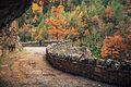 Camino (8231189237).jpg