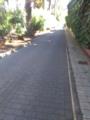 Camino Largo 6.png