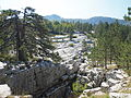Carbonate platform of the dinaric alps, karst geomorphy Bijela gora Montenegro.JPG