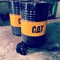 Cat (19149419858).jpg
