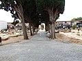 Cementerio viejo de Paiporta (5).jpg