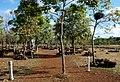 Cemitério do Batalhão - Monumento Nacional da Batalha do Jenipapo 04.jpg