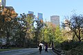 Central Park South - panoramio (2).jpg