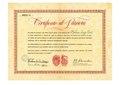 Certificato di Patriota da Gen Alexander.pdf