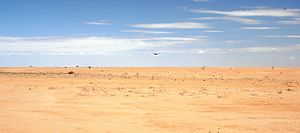 Chalbi Desert - Chalbi Desert panorama.
