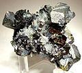 Chalcopyrite-Quartz-Pyrite-47275.jpg