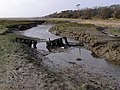 Channel in the mud, south of Tanners Lane end, New Forest - geograph.org.uk - 302653.jpg