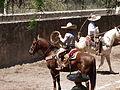 Charreada en El Sabinal, Salto de los Salado, Aguascalientes 27.JPG