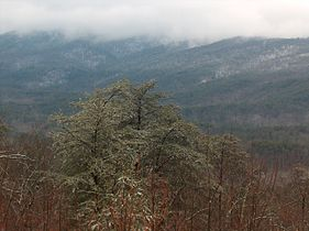 Cheaha in the Snow.jpg