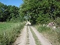 Chemin rural 34 à Saint-Rémy-lès-Chevreuse.jpg