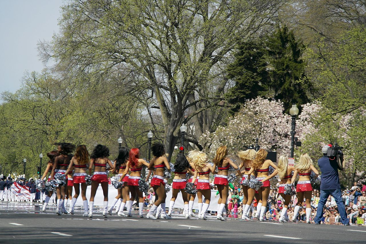 gay fest Dc blossom cherry