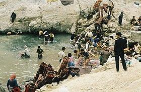 قالیشویی در مهرشهر کرج