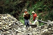 information on child labour wikipedia