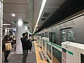 Chiyoda line Omotesando Station platforms - March 27 2021 various.jpeg