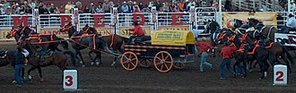 Chuckwagon - The Rangeland Derby at the Calgary Stampede 2006