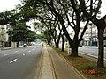Ciclovia da Avenida Afonso Pena - panoramio.jpg
