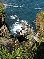Cliffs of Moher - Vogelkollonie - da unten - panoramio.jpg