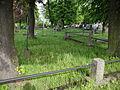Cmentarz wojenny nr 311 Nowy Wiśnicz.JPG