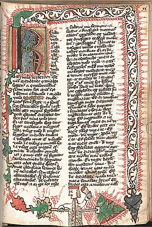Edict of Torda - Page from the Munich Codex of the first Hungarian translation of the Bible