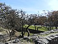 Colônia del Sacramento, Uruguai - panoramio (18).jpg