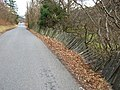Collapsing fence near Corris - geograph.org.uk - 1180800.jpg