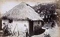 Collectie Nationaal Museum van Wereldculturen TM-60061664 Woning van Afro-Amerikaans gezin Jamaica.jpg
