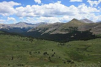 Collegiate Peaks Wilderness - Collegiate Peaks Wilderness, July 2011