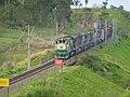 Comboio que passava sentido Boa Vista na Variante Boa Vista-Guaianã km 201 em Itu - panoramio.jpg