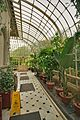 Conservatory at Farmleigh, looking towards exit 01.jpg
