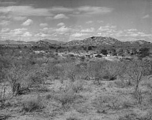 Tsavo - Countryside at Tsavo, early 1950s
