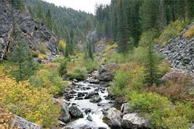 Photo of Crooked Creek flowing through a steep mountain valley