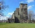 Crookston Castle (geograph 3948410).jpg