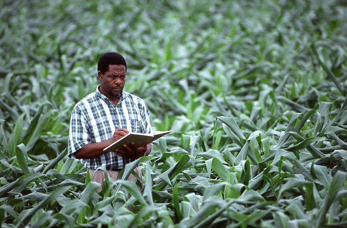 Comment devenir agronome