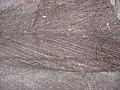 Cross-bedding in quartzite (Baraboo Quartzite, upper Paleoproterozoic, ~1.7 Ga; Tumbled Rocks Trail, Devil's Lake State Park, Wisconsin, USA) 15 (18634302350).jpg