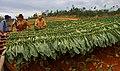 Cuba 2013-01-23 (8502015233).jpg