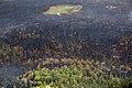 Currant Creek Fire, 6-27, NPS Photo Yasunori Matsu (9158619317).jpg
