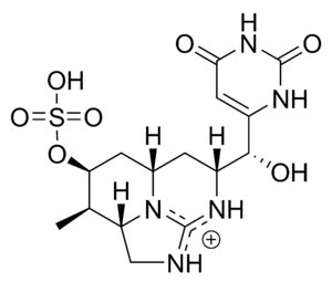 Cyanotoxin - Cylindrospermopsin