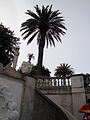 DSC27385, Hearst Castle, San Simeon, California, USA (5618037792).jpg