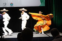 Dancing at the Wikimania 2015 Opening Ceremony IMG 7627.JPG