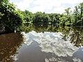 Davidson Mill Pond Park, South Brunswick, New Jersey USA July 15th, 2013 - panoramio (8).jpg