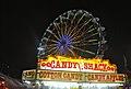 Delaware State Fair - 2012 (7737841458).jpg
