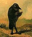 Der Rabe (Carl Spitzweg, Ausschnitt).jpg