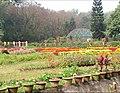 Dhaka botanical garden.jpg