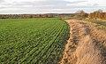 Diverted bridleway rejoins original route south-west of Bannerhill Farm - geograph.org.uk - 1589325.jpg